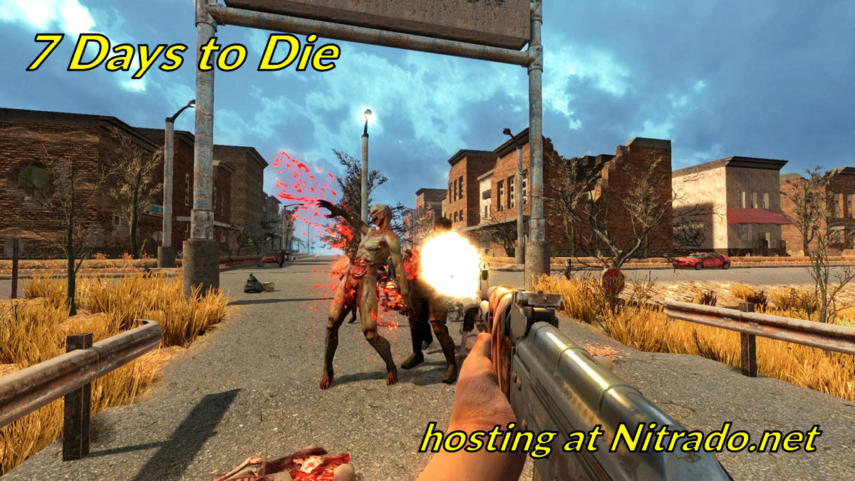 Game hosting at Nitrado net - GoodGameServers com